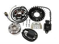 Allumage complet HPI (12V) avec lumière (60W), moteur vélomoteurs Sachs 503, Puch Velux, Belmondo